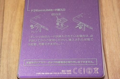 DSC00600_R